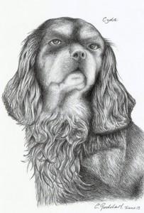 Cyda Sketch