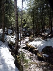 trailingstream1