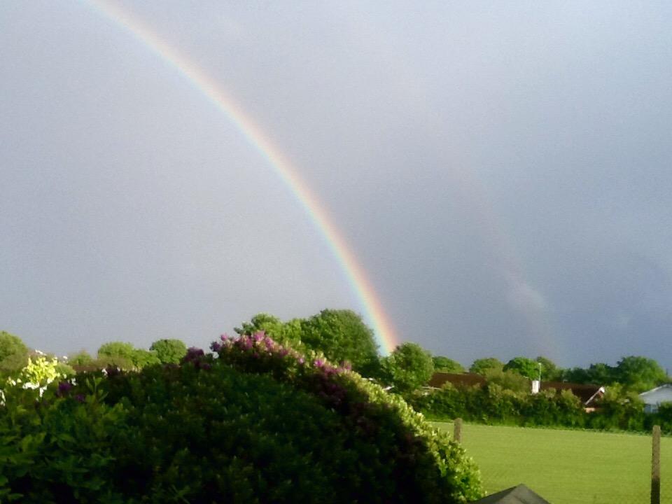 Rainbow Bridge Funeral Services - Heronbank Cavaliers
